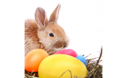 Strange Music Artists Share Their Thoughts On Easter