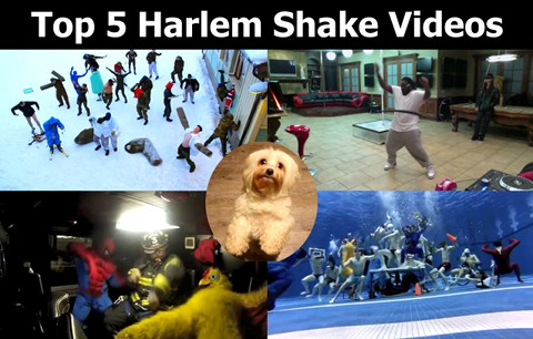Top 5 Harlem Shake Videos