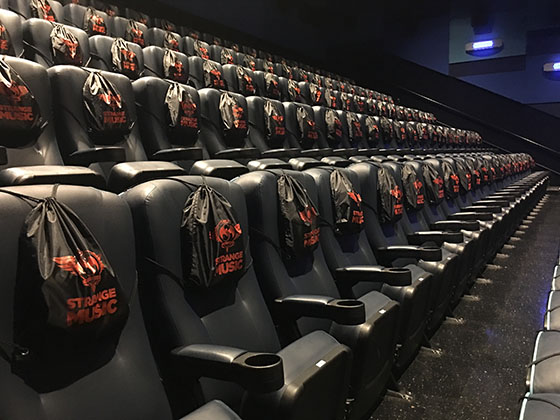 VIP bags in theater